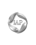 IAP(Intergated Auto Parts)
